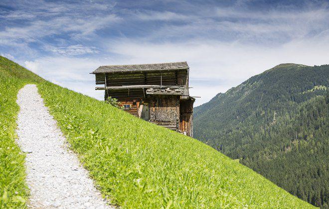 Stall im Naturpark Zillertaler Alpen