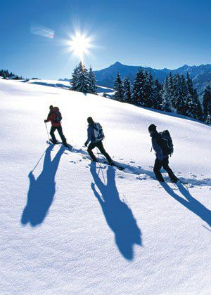 Ski Tours in the Tyrolean winter